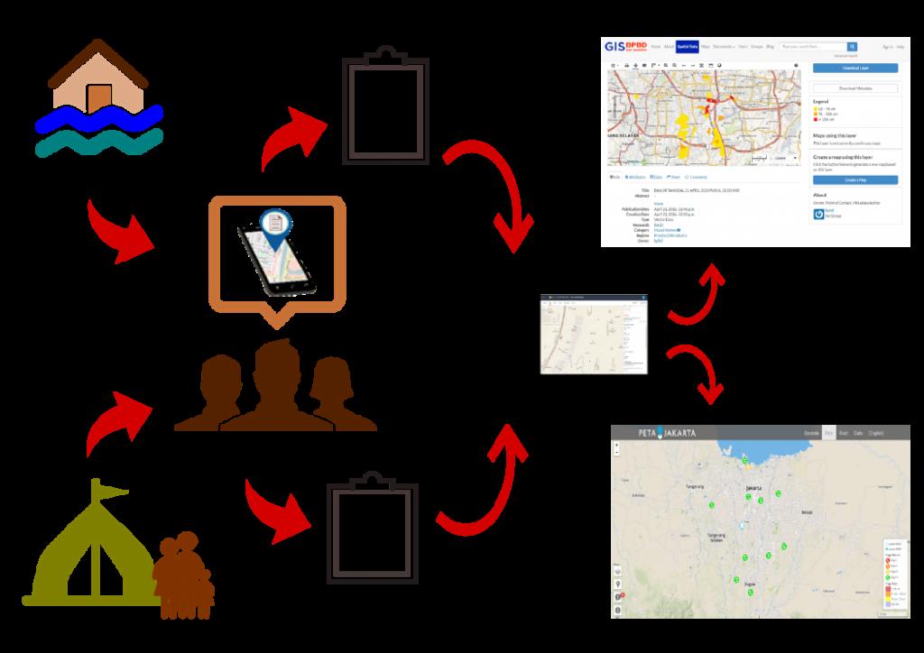 diagram surveyor gdc